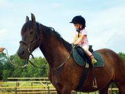 Veronika na koni