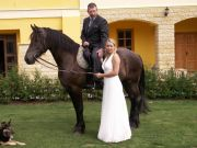 svatba červenec 08
